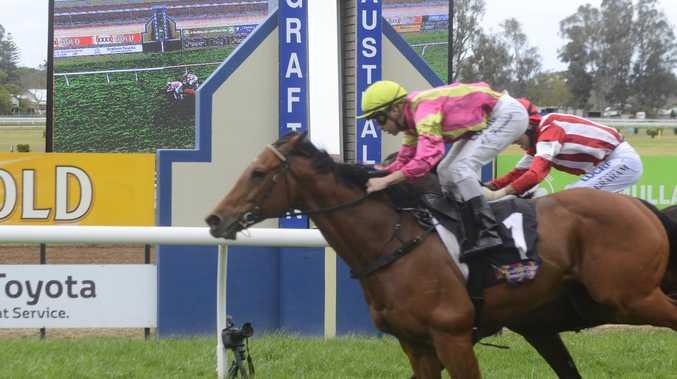 Grafton racing royalty among winners at Casino Beef Week