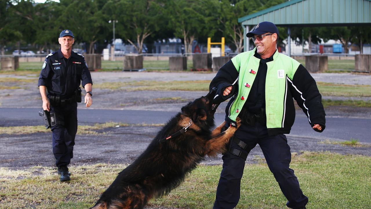 Sergeant Dave Raymond watches his dog Axel arrest Senior Constable Dan Fysh. PICTURE: BRENDAN RADKE