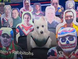 Fans make mockery out of NRL