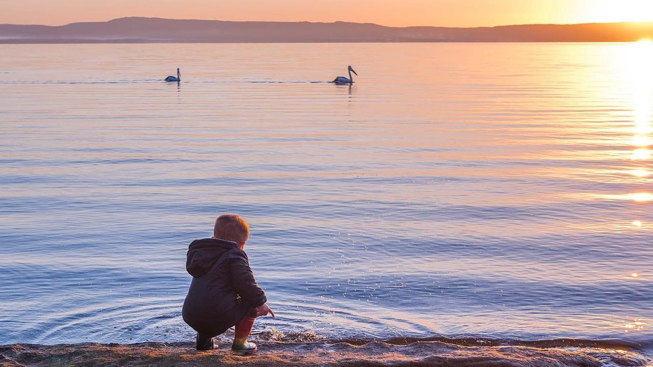 Lake Cootharaba near Boreen Point. Photo: Nicola Powell