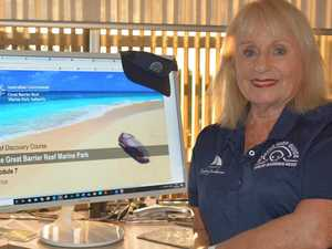 Learn about the Great Barrier Reef from home
