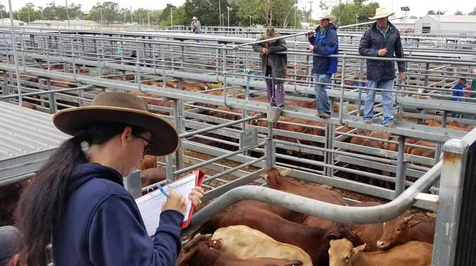 Proposed saleyards expansion a cause of dispute