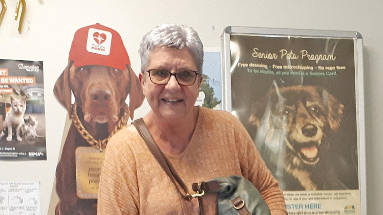 Carol Free adopted Maltese cross Jasper from Mackay Regional Council's Senior Pet Program