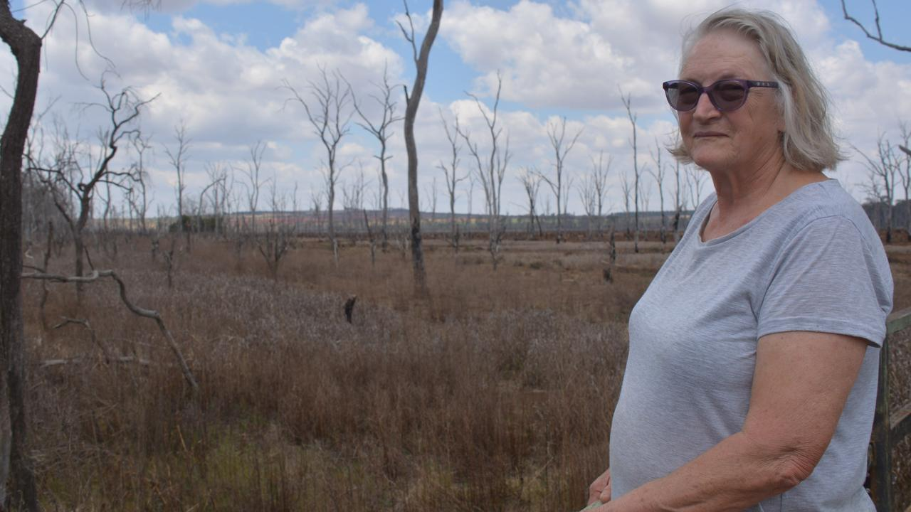 Wooroolin resident Diana Bolton has watched the wetlands dry back up after the floods. (Photo: Jessica McGrath)