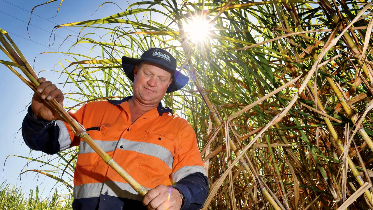 Bakers Creek cane farmer and Racecourse Mill supplier Ross Williams is one of hundreds of Mackay Sugar and Wilmar growers preparing for the start of the 2020 crush. The crushing kicks off today at Farleigh Mill. Picture: Tony Martin