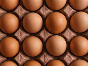 'Massive shortage' of eggs Australia-wide predicted