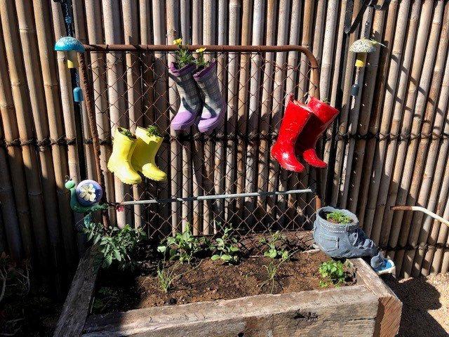 The children's garden in the new sensory garden at the Lockyer Community Centre.