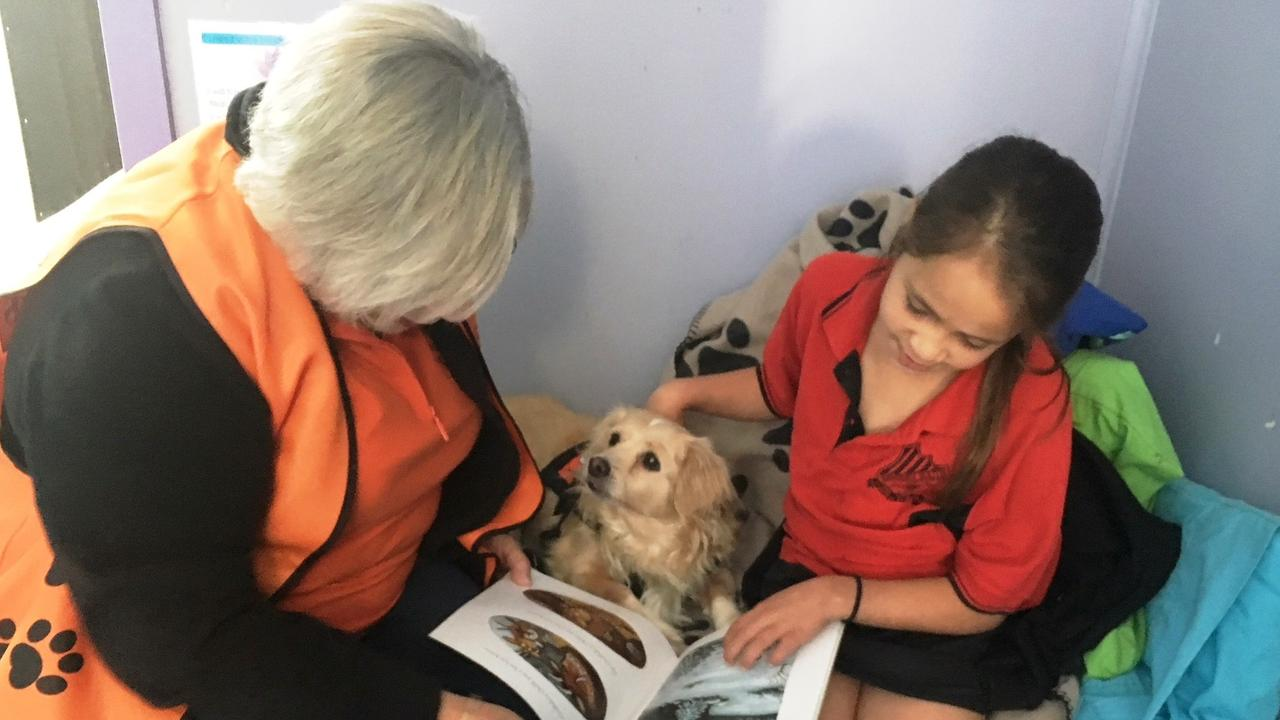 DOGGY TREAT: Helen, Coco the dog and Nyrinaa share a book during a Story Dogs session. PHOTO: STORYDOGSInset, Holly the greyhound, shows just how eager she is to get on with the job.