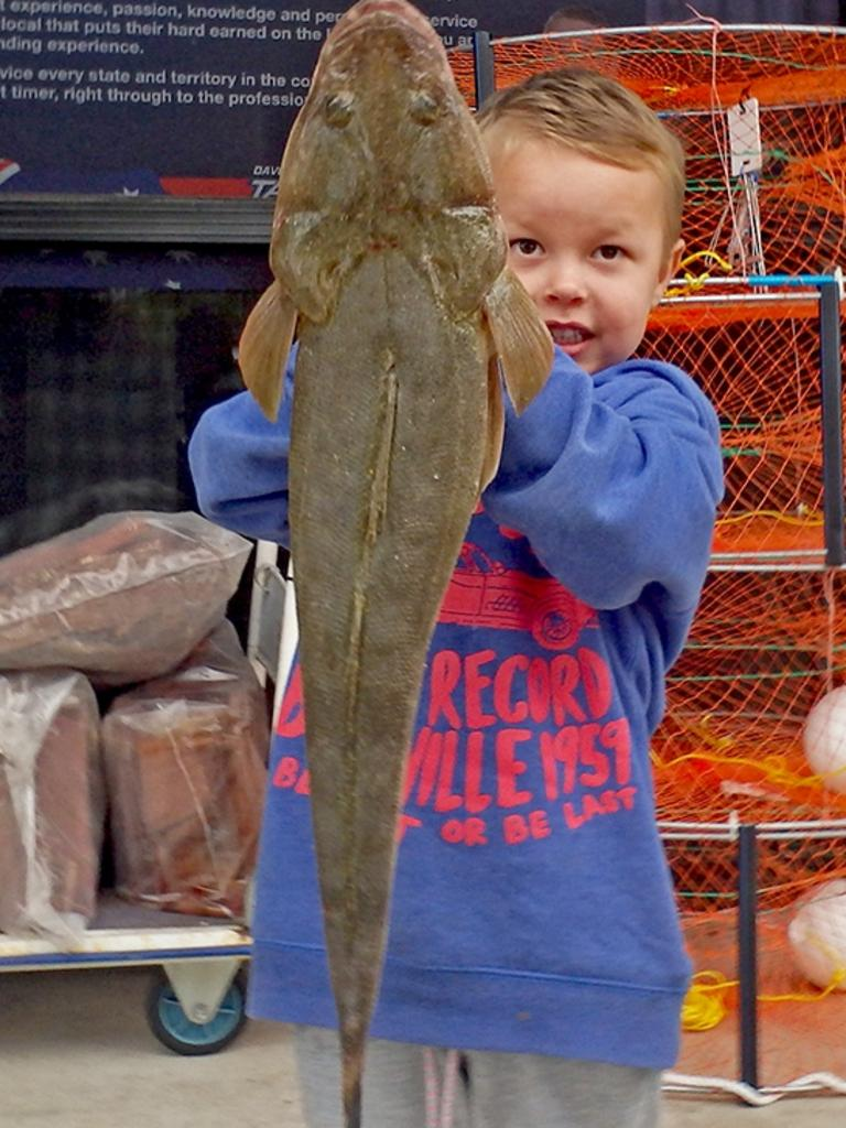 GOTCHA - Three-year-old Leon Thorp won the $100 Davo's Tackle World/ChaseBaits fish of the week prize with this 63cm flathead which he caught off one of the Gympie Terrace jetties. Photo: www.fishingnoosa.com.au