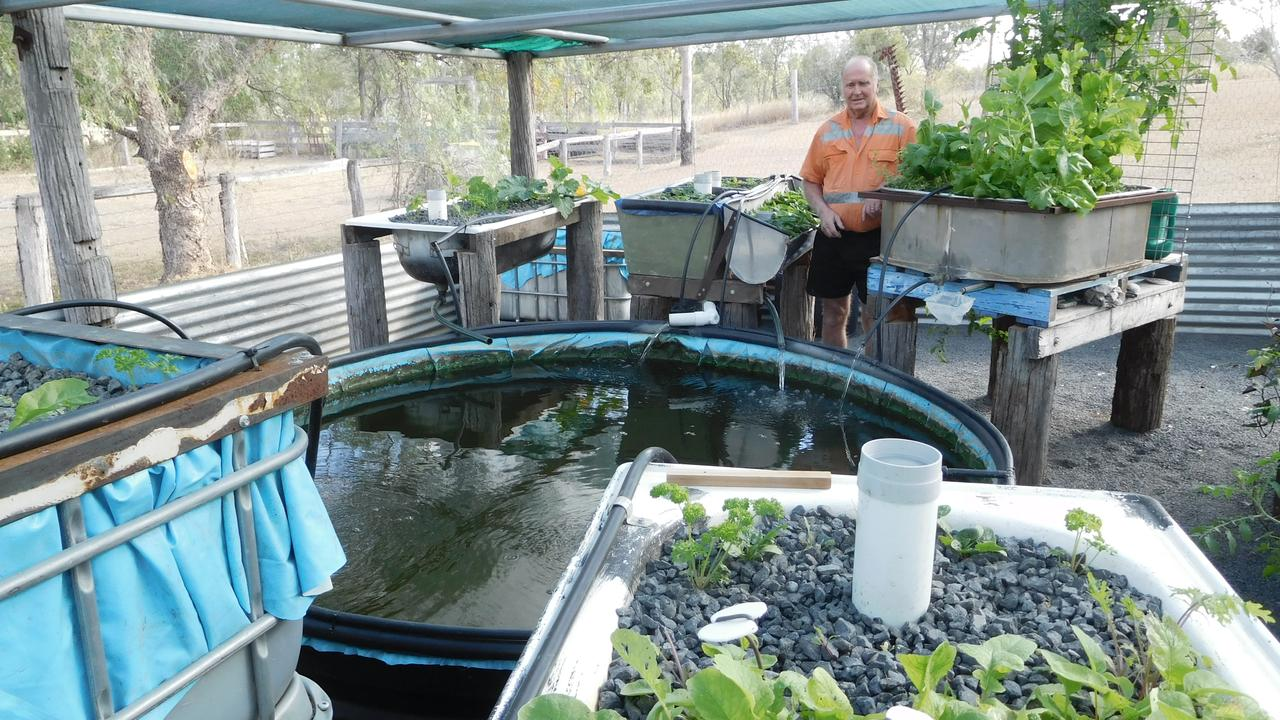 Doug and Desley Kuhn's aquaponic set up at their property near Mungungo. Picture: Contributed
