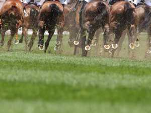 Racing Queensland eases restrictions for local race meets