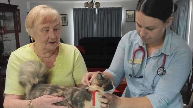 Toowoomba vet starts up home service