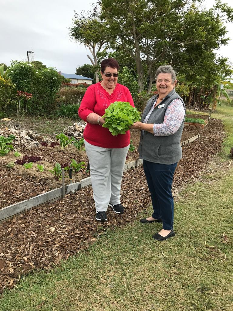 Jenny Marquardt and Shirley Eden inspect the lettuce crop.