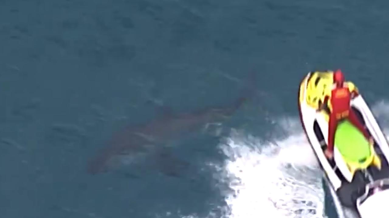 A jet ski is used to move a shark off near the scene of the fatal attack. Picture: 7NEWS