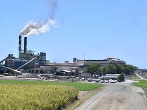 Mackay Sugar crushing hits start date hurdles