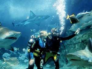 Coast tourism jobs cling to $5m cash splash