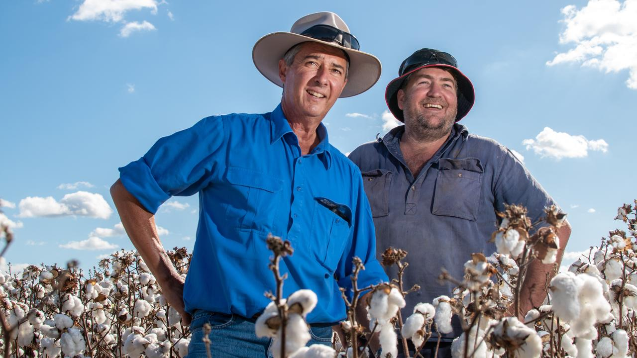 CGS Dalby agronomist John Ash, with Toogoolawah farmer Mark Cowley, in his trial crop of cotton. PHOTO: ALI KUCHEL