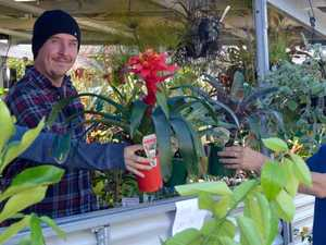 Demand for plants leads to revamp for garden centre