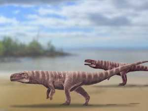 Check out the car-sized crocs that roamed Earth