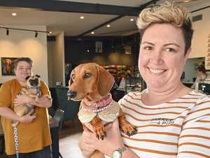 New cafe dishes up the perfect dog's breakfast