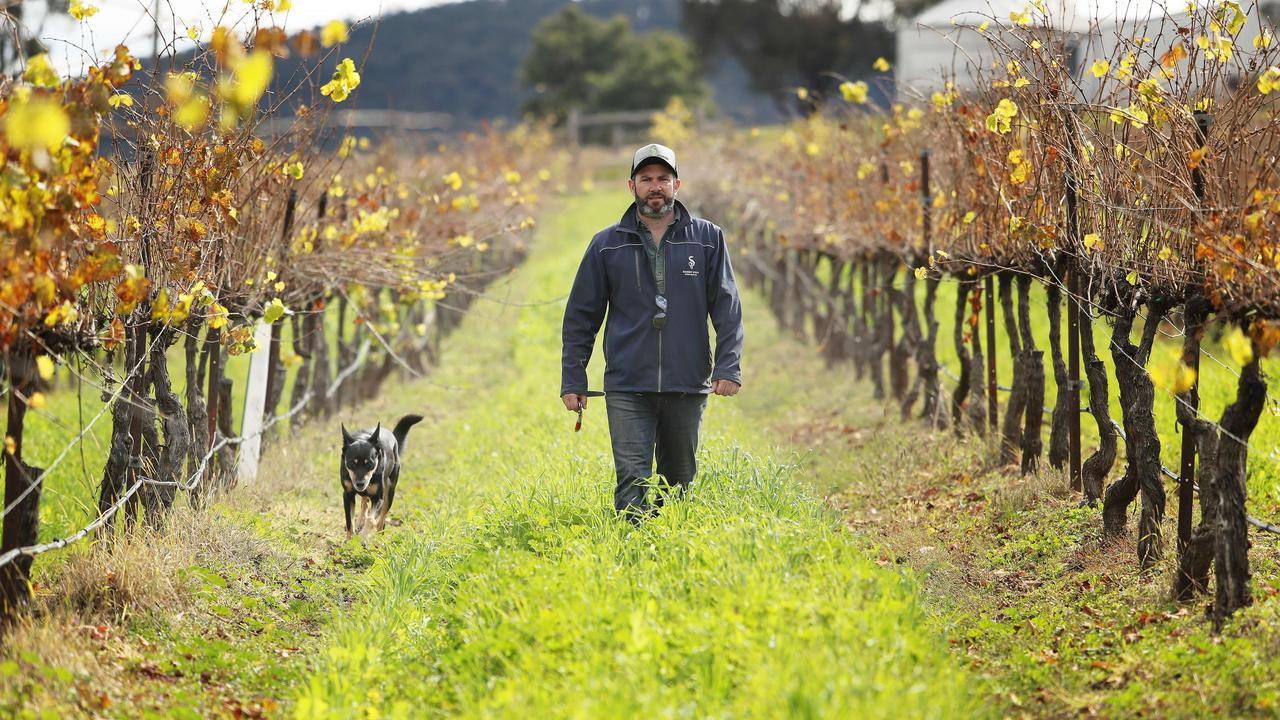 Wine growers across the country will have to adapt how they grow.