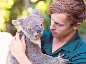 Delays to $94.6m 'lifeline' for zoos