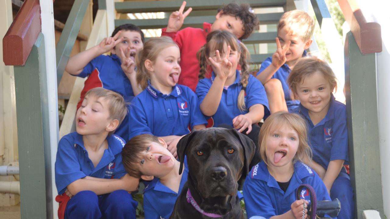 SILLY TIME: Benarkin State School Preps with Leila the school dog. Photo: Madeline Grace