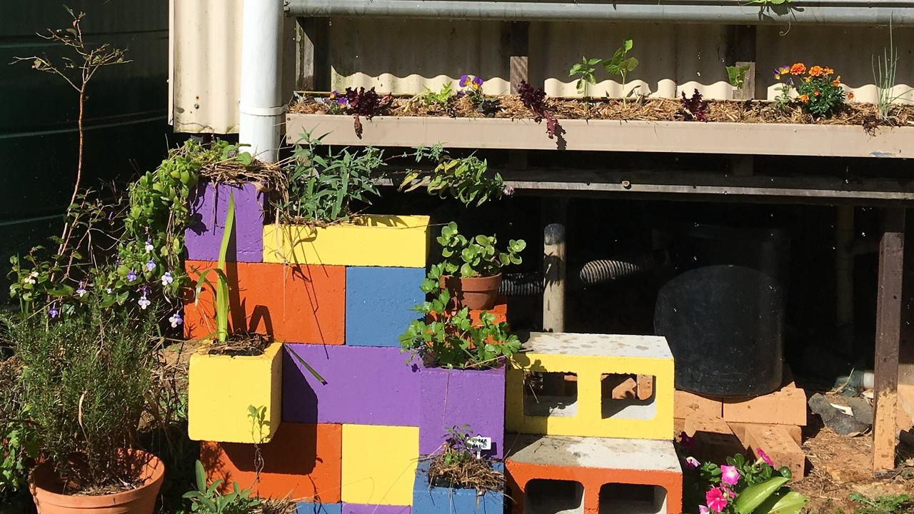 WHERE TO GROW: Consider all the elements when deciding on a good spot for plants.