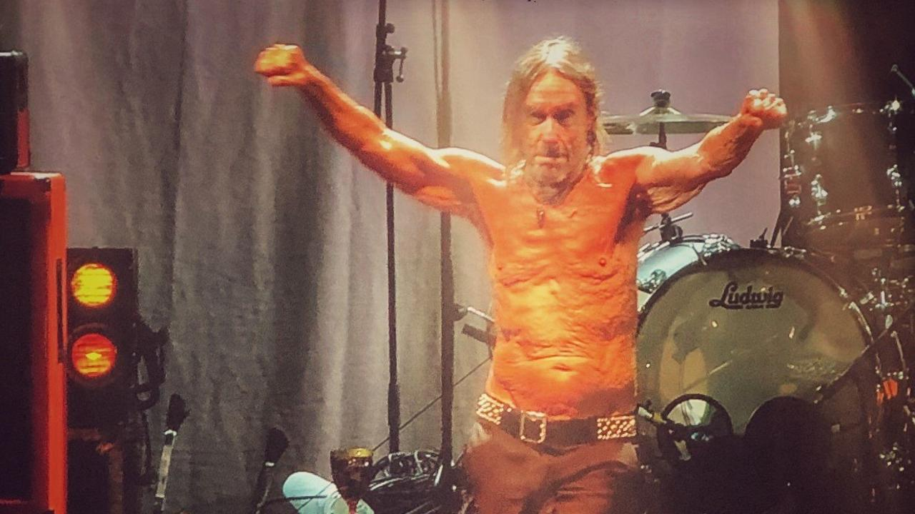 FAVOURITE: Punk Godfather Iggy Pop triumphed at Bluesfest 2019 despite the Blues Babblers.