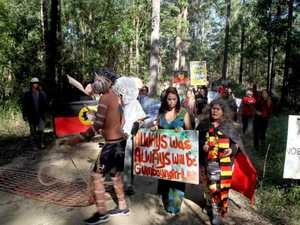 Nambucca forest activists take their case to NSW Parliament