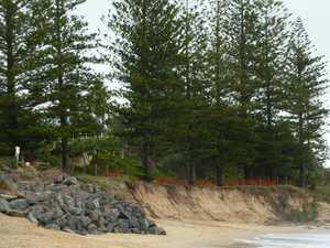 Last line of defence to save coastline