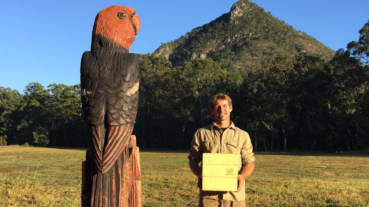 Shane Christensen pictured with the king parrot sculpture that was inhabited with native bees. Picture: Contributed.