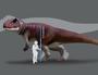 Gigantic predatory dinosaurs once roamed Toowoomba, Ipswich