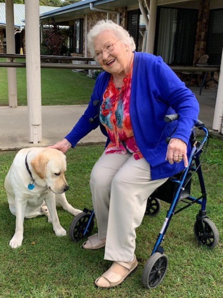 Dot Coman loves caring for the golden labrador.