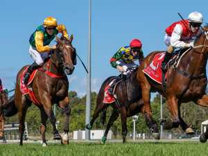Hopes owners, members can return to Corbould Park soon