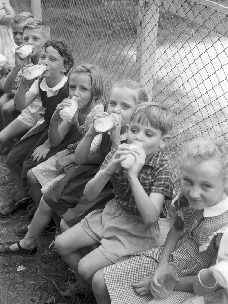 Some of the 60,000 school children who collected their third of a pint of milk on the first day of the free milk scheme in Brisbane schools. Picture by A. Pascoe. C957.41. The Courier-Mail Photo Archive.