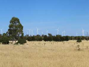 Assessment into wind farm ordered over endangered animals