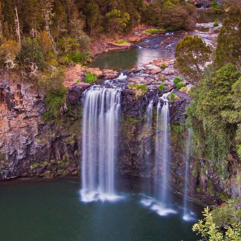 Dangar Falls, near the township of Dorrigo.