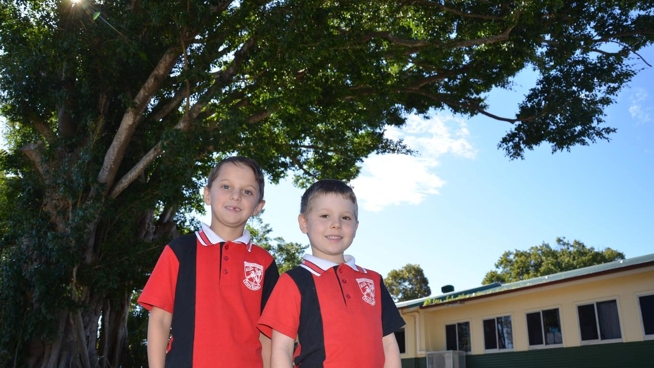 Hamish Finlay and Zachary Harradine from Gooburrum State School under the 'Prince of Wales' 100-year-old tree.