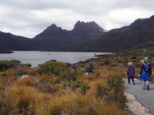 Get ready to hit play on this Tassie highlights reel