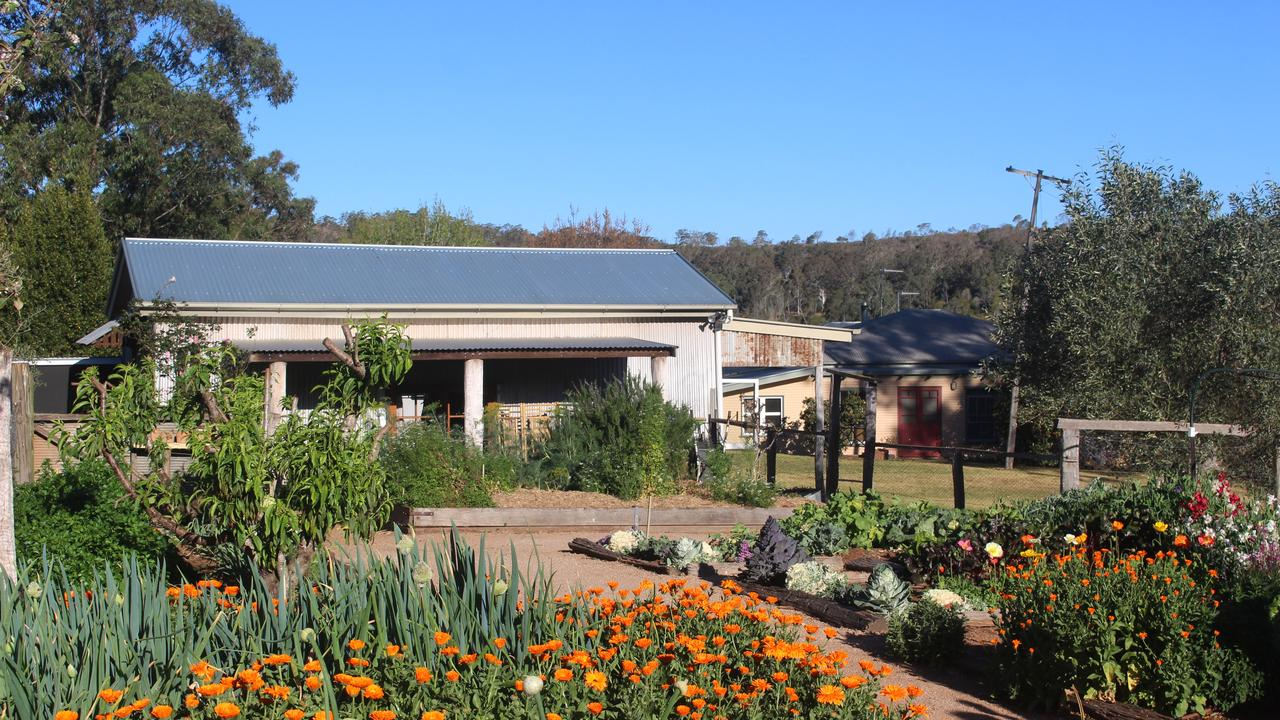 COUNTRY TOURISM: Bunnyconnellen olive grove and vineyard in Crows Nest is one of the Toowoomba region's many popular attractions