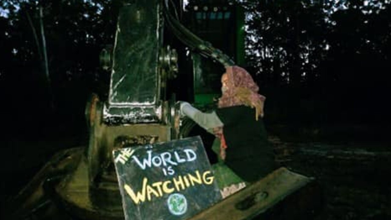 A protester locked themself onto machinery in a bid to prevent the recommencement of a logging operation at Nambucca State Forest.