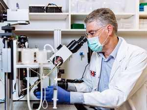 Aussie scientists' virus breakthrough