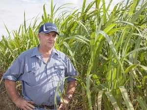Canegrowers demand to know future of M'boro mill