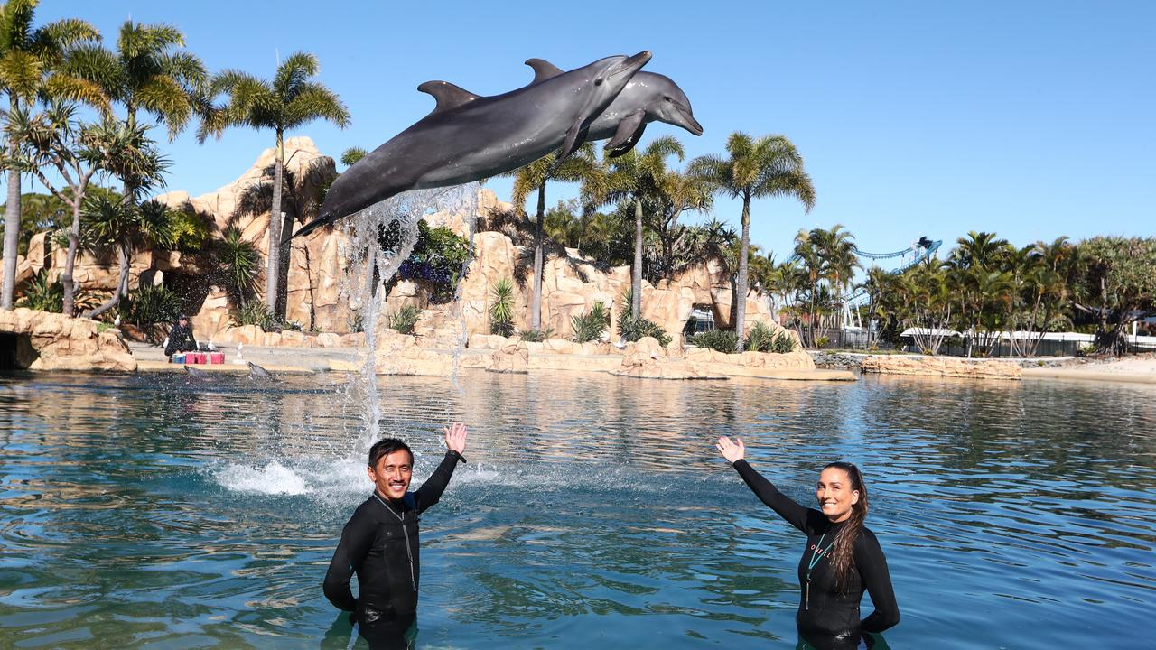 Trainers Chee Thao and Zoe Taylor, with dolphins Gemma and Moki, are preparing to welcome back guests. Photograph: Jason O'Brien