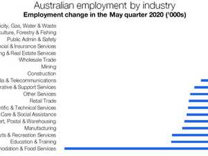 'Grim' job graph shows industries at risk