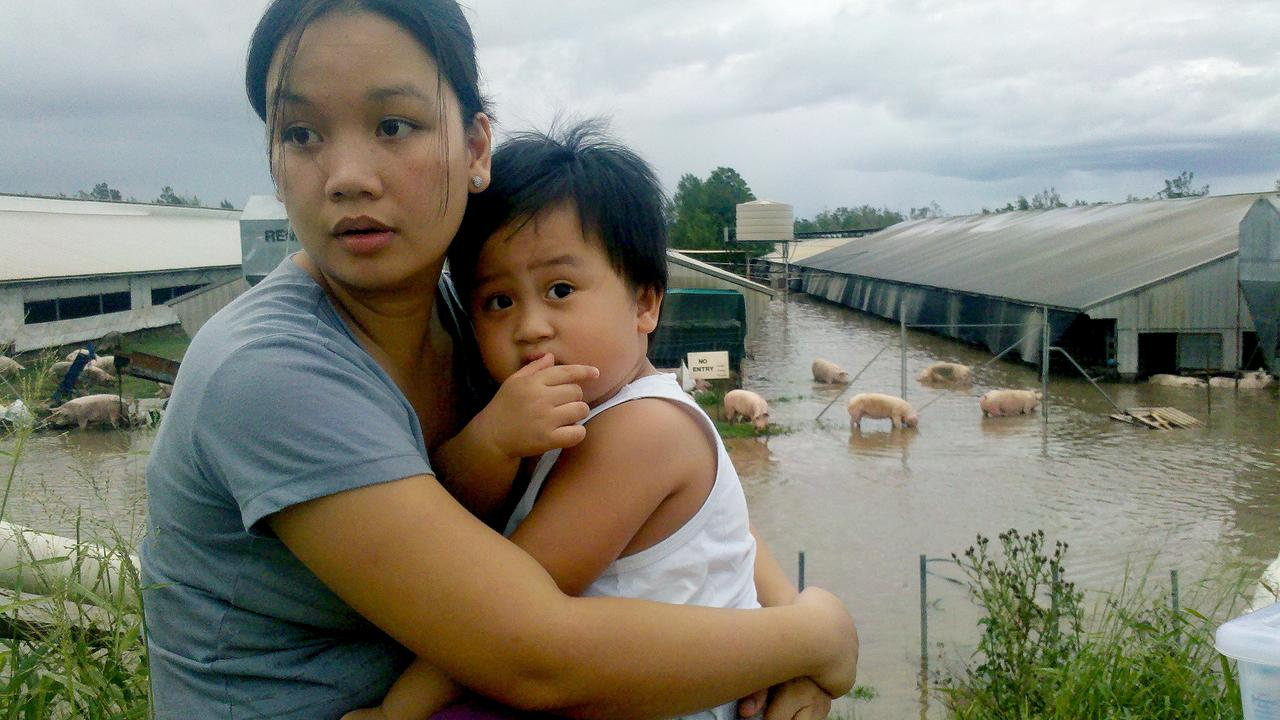 THE WAITING BEGINS: After helping to free the pigs with son Matthew on her hip, Rose-Ann Chan climbed onto a tank at Burnett Pork Alliance Unit 5 site to watch her home go under water and to begin the 16 hour wait for rescue. Picture: Contributed