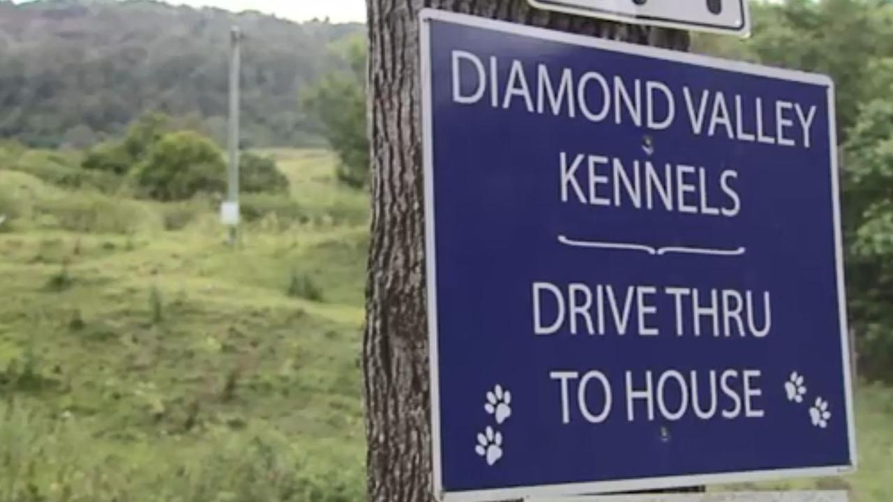 Diamond Valley Kennels has applied to council to increase its facility.