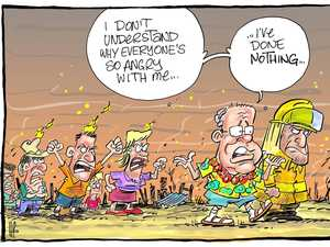 Daily Mercury cartoonist picks his favourites