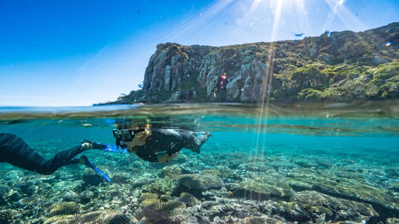 Allez nager sur la côte du Capricorne du Queensland pendant ces vacances scolaires. Image: fourni